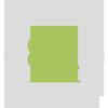 Laubbaum und Nadelbaum Icon