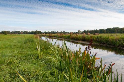 Landschaft mit Fluss und Wiesen