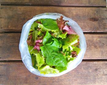 Salatmischung mit Baby-Spinat