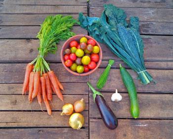 Möhren, Tomaten, Palmkohl, Schnittknoblauch, Knoblauch, Zwiebeln und Aubergine