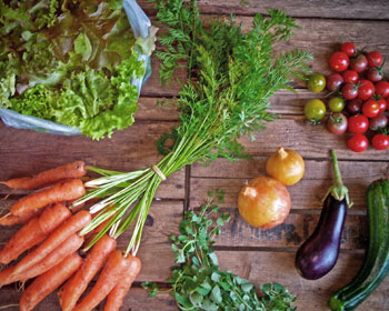 Salatmischung, Möhren, Oregano, Zwiebeln, Aubergine, Zucchini und Tomaten