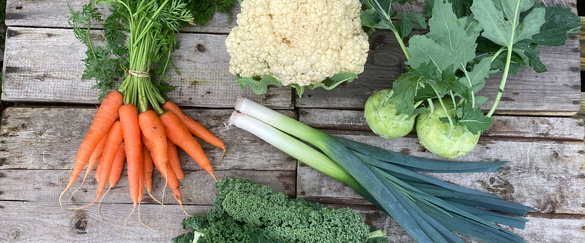 Porree, Karotten, Kohlrabi, Blumenkohl und Grünkohl