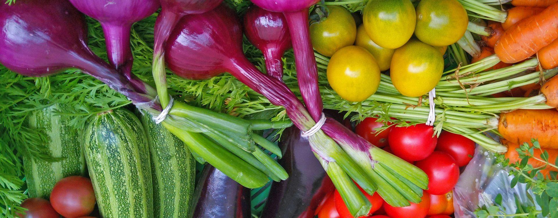 Große Gemüsekiste im Sommer