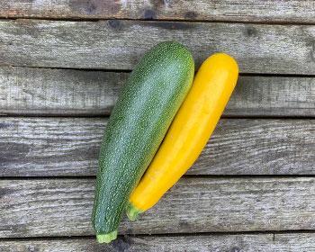 Zucchini Zuboda und Gold Rush
